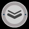 basic knowledge of veterans badge